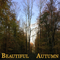 Beautiful Freaks S13E01: Beautiful Autumn