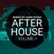 HARD KICKS - After House Vol II