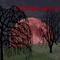 Midnight Special Episode 18 - Gewachsen