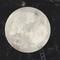 Poemoda   Dia do Escritor, Descida do Homem na Lua