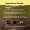 Unexplained Sounds - The Recognition Test # 220