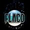 DJ Flaco - Yeoman's House Set Live (3-17-19)