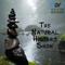 Natural History Show - 02-06-2018 - Antarctica