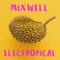 Mixwell  @  Electropical