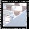 Mild Animals w/ The Heavy Twelve - 17th May 2019