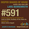 Deeper Shades Of House #591 w/ exclusive guest mix by ADHAM ZAHRAN
