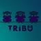 TRIBU - Overnight (2012-03)