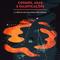 Cosmos,asas e falsificações - a ciência nas palavras dos poetas #16