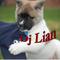 Dj Lian Reggaeton y MAS Mix   Nov 2017