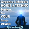Organic & Melodic HOUSE & TECHNO Session for YOUR Inner PEACE by Gazebo Dj TTM.