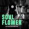 Mickael Seban  - Soulflower // January 2018