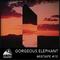 Avalanche Collective : Gorgeous Elephant - Mixtape #15