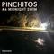 Pinchitos Nr. 06