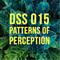 DSS015 - Patterns of Perception