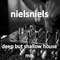 nielsniels DEEP but SHALLOW house mix #1 [DOWNLOAD IN DESCRIPTION]