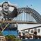 The Dan, Bridge & Pub Quiz