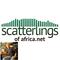 Kyle Hannan's 2015 Top 10 on ScatterlingsOfAfrica.net
