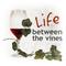 Vino Lingo:  Mike Moyer Director Wine & Viticulture, Lake Michigan College, Benton Harbor, Michigan