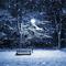 Ursus - Winter Nights