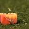La Mesa de Redacción: A un árbitro le lanzan una dentadura postiza