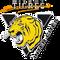 Warm-up mix Tigres Midget AA 2016-2017