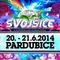 Dual Preset - Festival Svojšice 2014 Contest