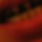Šejkr 07 (4.6.2021)