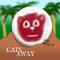 133 - Cast Away