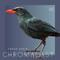 Chromacast 46 - Frank Serin