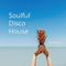 Soulful Disco House Vol.1