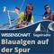 Bloomsail – Den Ostsee-Blaualgen auf der Spur