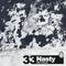 HT33 / NASTY