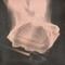 Proccessor - Buntfilztier live @ home 19.04.2014