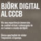 Rosa Ferré, head of Exhibition at CCCB, talking about the Bjork Digital Exhibition !