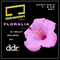 Club Comfort - Floralia - April 23rd - DJ Selky & Baliboc
