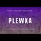 Physical Techno Label Show #32 pres Plewka