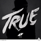 Avicii - True Tour ( Full Remake )