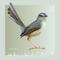 Chromacast 30 - Trouble (Interview & Mix)