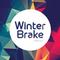 WinterBrake