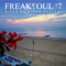 Freaksoul '7 Mixed By Miros Meltemi