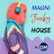 MAGNI-Funky-House