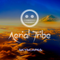 Aerial Tribe - Skyscapes of Goa