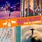 Show 237: Brazil & Spain - A Musical Fusion Fantastia