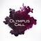 Olympus call