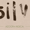 Playlist Azoofa: as 5+ de Silva