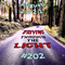 Driving Through The Light (#202)