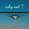 SET NOV 2016 - ROGER DREISSIG DJ - WHY NOT?