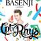 Basenji Set