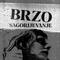 BRZO SAGORIJEVANJE RADIO SHOW # 21
