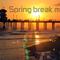 Springbreak/ miami mix